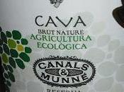 Cava Dionysus 2011 Brut Nature Reserva, Canals Munne