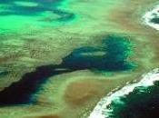 Situación Gran Barrera Coral Australia.