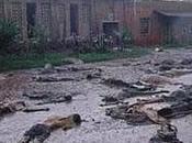 Genocidio Ruanda: renglones torcidos Dios