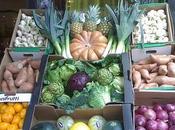 Frutas verduras invierno