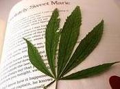 Literatura: escritores marihuana