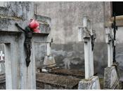 Cementerio planilla. calahorra