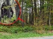 Bigfoot real afirma equipo investigación. vídeo inédito