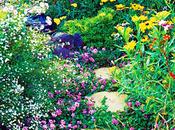 Cómo Planificar Jardín Mariposas