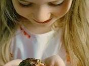 palabras: niño rana (agua, ojos, secreto)