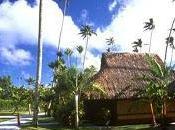 islas Polinesia