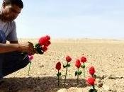 Moulud Yeslem siembra flores muro marroquí Sahara Occidental