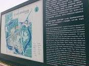 Jardín Botánico Shanghai (Chenshan)