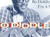 """Diddley: Diddley"""""""