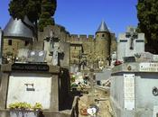 Difuntos ÁnimasMaría Jesús Mayoral Roche Cementerio