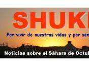 Resumen SHUKRAN octubre 2013