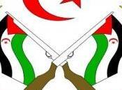Gobierno saharaui condena discurso Marruecos sobre Sáhara Occidental