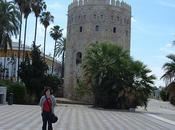 Torre Oro, Museo