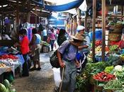 Discrepancias sobre datos hambre Guatemala: ¿quién dice verdad?
