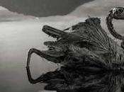 Pájaros murciélagos momificados Tanzania