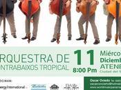 Orquesta Contrabaixos Tropical