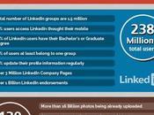 Infografía: redes sociales cifras (2013)