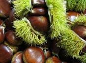 "Noviembre, ""mes batatas, castañas, bellotas nueces""...."