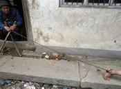 Niño chino problemas mentales encadenado padre. fotos.