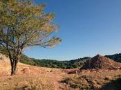 Junta condiciona posible exhumación donde podría estar lorca resultados sondeos