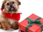 Nuestros perros cena navideña… ¿qué deben comer?