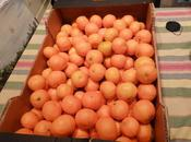 Mandarinas ricas ricas.