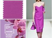 Orquídea Radiante: Color 2014
