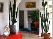 Vivir plantas Living with plants