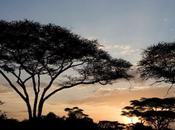 viaje Tanzania...