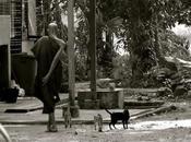 Mawlamyine Hpa-an: odisea Myanmar