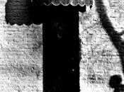 Neil Young Live Cellar Door (1970)
