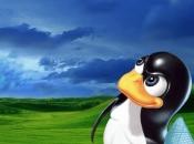 Pasar Linux Windows