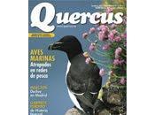 Lecturas Quercus: invento llamado conservación.