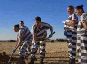 trabajos forzados mujeres Estados Unidos. fotografías