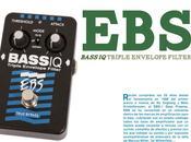 Magazine Bajos Bajistas Review Bass