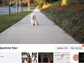 ¿como buscar poner portada para perfil google facebook?