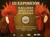 Factorías Málaga, Granada, Córdoba, Jaén Sevilla darán cita Mercado Queso Tradicional Álora