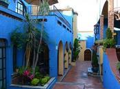 Tamal vino mexicano Villa Ensueño