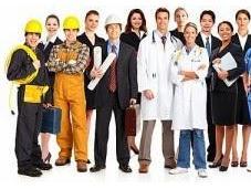 ¿Cuáles nichos empleo 2014?