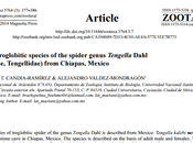 Nueva especie arañas cuevas México