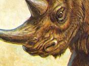 ZOOBOOKS: Antepasados rinocerontes