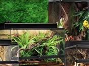 Terra Terrarios Accesorios para Reptiles