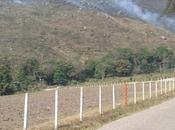 Urgente queman cerros guarico anzoategui