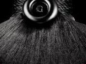 Petite Robe Noire, Ediciones Limitadas curiosidades