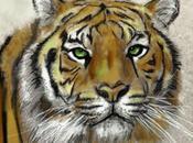bigote tigre (Cuento anónimo coreano)