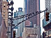 días Nueva York. recorriendo centro Manhattan