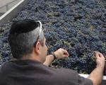 Vino Kosher consiste?