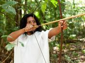 Vestimenta precolombina III): vestimenta plumaria maya