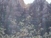Desierto Palmas, paraje natural soledad silencio