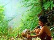 niños, salud medio ambiente